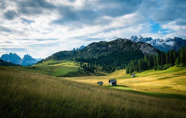 Dolomites - Pasture